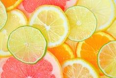 Skivade citrusfrukter Royaltyfria Bilder