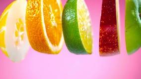 Skivade frukter som faller i vattenfärgstänk royaltyfria bilder