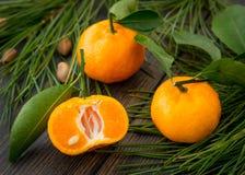 Skivade orange clementinetangerin med gräsplansidor och conife Fotografering för Bildbyråer