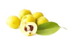 Skivade quinces med den gröna leafen Royaltyfri Foto