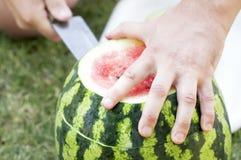 Skivade skivor av en mogen vattenmelon på grönt gräs Royaltyfria Bilder
