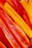 skivade spansk peppar arkivfoto