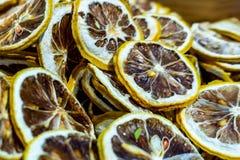 Skivade torkade citroner fokuserade royaltyfria bilder