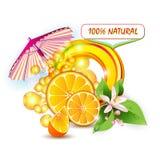 Skivar orangen med blommor vektor illustrationer
