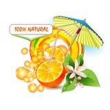 Skivar orangen med blommor royaltyfri illustrationer
