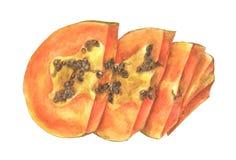 Skivat av den mogna papayaen med fr? som isoleras p? vit bakgrund royaltyfri illustrationer