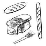 Skivat bröd, släntrar länge och bagetten Fotografering för Bildbyråer