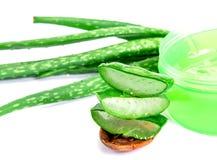 Skivat och bladet av ny aloe vera med aloe vera stelnar produc Royaltyfria Foton