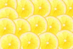 Skivor av citronen i stordia med kopieringsutrymme för din text fotografering för bildbyråer