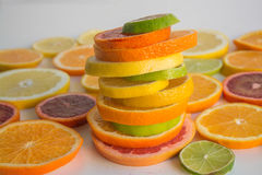 Skivor av olika citrusa typer som är ordnade i en färgrik bunt Royaltyfri Fotografi