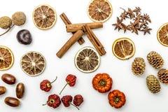 Skivor av torkade apelsiner, kanel, torkade jordgubbar, ekollonar, anisblomma, sörjer kottar och pumpor royaltyfria foton