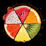 Skivor av tropisk frukt royaltyfri illustrationer