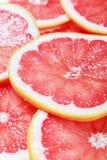 skivor för bakgrundscitrusfruktgrapefrukt Royaltyfri Bild