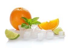 Skivor för iskuber, apelsin-, mintkaramell- och limefrukt fotografering för bildbyråer