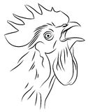 Skizze eines krähenden Hahns Stockbild
