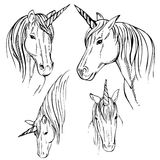 Skizzen-Einhorn, Hand gezeichnete Tintenillustration Lizenzfreies Stockbild