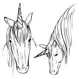 Skizzen-Einhorn, Hand gezeichnete Tintenillustration Einhornpferdetier Stockfotografie