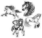 Skizzen von vier Pferden lizenzfreie abbildung