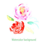 Skizzenaquarellblumen in der Weinleseart Lizenzfreie Stockfotografie
