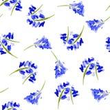 Skizzenaquarellblumen in der Weinleseart Stockbild