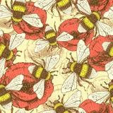 Skizzenbiene und -mohnblume in der Weinleseart Lizenzfreie Stockbilder