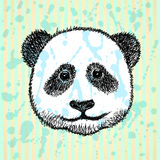 Skizzenkopf des Pandas, Vektorhintergrund Stockbild
