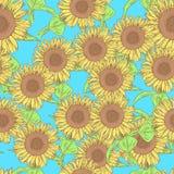 Skizzensonnenblume, nahtloses Muster der Vektorweinlese Lizenzfreie Stockfotografie