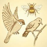 Skizzenvögel und -biene in der Weinleseart Stockbilder