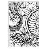 Skizzenvektor-Herbstillustration Lizenzfreie Stockbilder