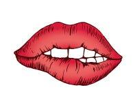 Skizzenvektorzeichnung, helle rote gebissene Lippe stockbilder