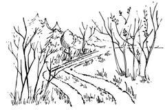 Skizzenweg im Wald Lizenzfreie Stockfotos