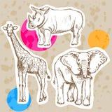 Skizzieren Sie Giraffe, Elefanten, Nashorn, Vektorhintergrund Stockbilder
