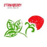 Skizzierte Fruchtillustration der Erdbeere Stockfotos