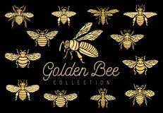 Skjorta för mode t för samling för uppsättning för guld för guld- för broderilappbi för krona för humla för geting broderi för kr royaltyfri illustrationer