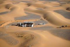 Skjul och kamel Royaltyfri Fotografi