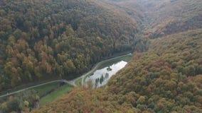 Skjuta från ett flyg för fågel` s, härliga berg, skog, ren luft stock video