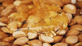 Skjuta hällande honung på mandeln med den snabba kameran stock video