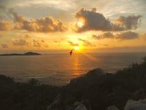 Skjuta i höjden över Seychellerna Arkivbilder