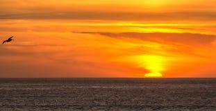 Skjuta i höjden in i den härliga solnedgången arkivbild