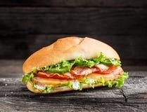 Skjuta in med höna, baconost och grönsaker Fotografering för Bildbyråer
