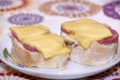 Skjuta in med kött och ost på den färgrika bakgrunden Royaltyfria Bilder