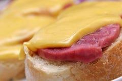 Skjuta in med kött och ost på den färgrika bakgrunden Fotografering för Bildbyråer