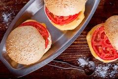 Skjuta in med ost och tomaten Arkivfoton
