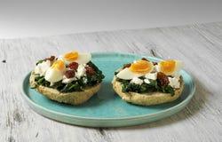 Skjuta in med spenat, det kokta ägget och torkade tomater Royaltyfri Fotografi