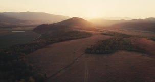 Skjuten antenn: flyg över den mest forrest färgrika hösten för mist guld- timmesolnedgång arkivfilmer