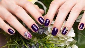 Skjuten härlig manikyr med blommor på kvinnliga fingrar Spikar design Närbild royaltyfria bilder
