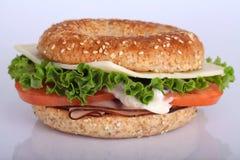 Turkiet smörgås Royaltyfria Bilder