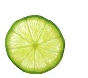 skjuten skiva för limefrukt makro arkivbild