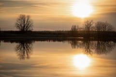 skjuten solnedg?ng f?r maccro ?ng Solen, himlen och träden reflekteras i floden V?rflod arkivfoto