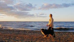 Skjuten Steadicam ultrarapid: Ung kvinna som går med hans älskade hund längs banken av sjön lager videofilmer